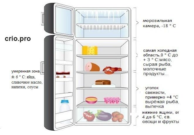 Где и сколько градусов в холодильнике