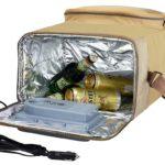 Как правильно выбрать сумку холодильник и аккумулятор к ней